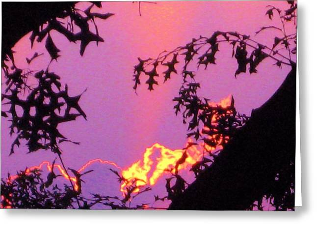 Greeting Card featuring the photograph A Mid-summer Sunset by Susan Carella