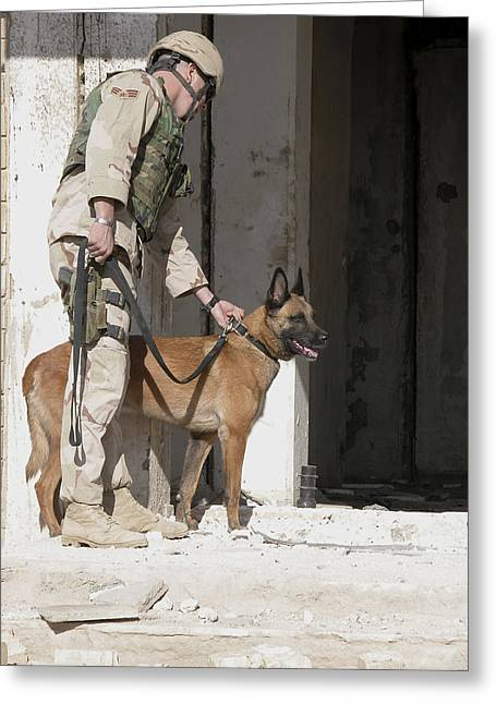 Dog Handler Greeting Cards - A Military Working Dog And His Handler Greeting Card by Stocktrek Images