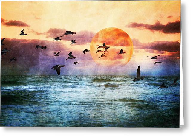 A Moment At Sea Greeting Card by Debra and Dave Vanderlaan