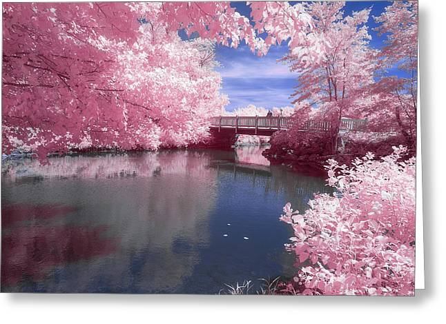 Greeting Card featuring the photograph A Moment To Reflect by Brian Hale
