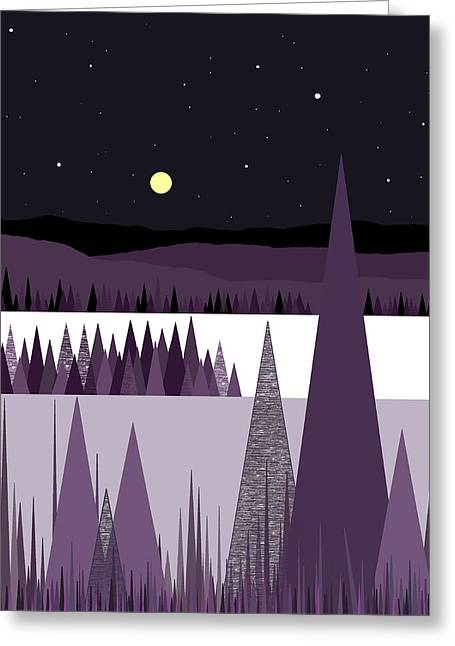 A Moonlit Winter Night Greeting Card