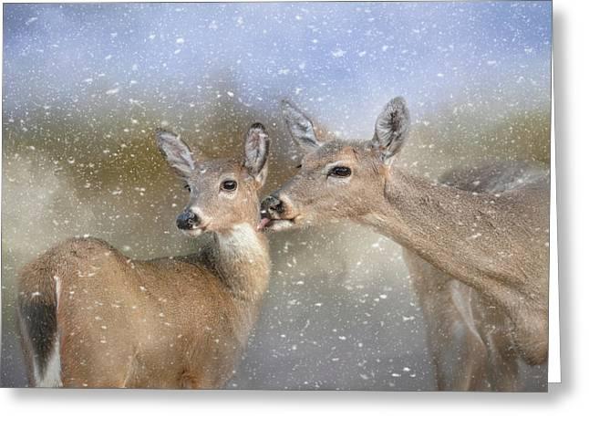 A Mother's Love Deer Art Greeting Card