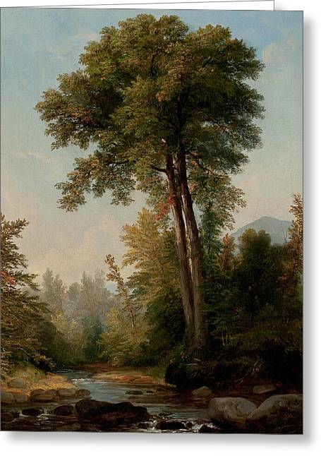 A Natural Monarch Greeting Card by Asher Brown Durand