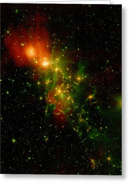 A Nebula Called Ngc 1333 In The Constellation Perseus Greeting Card by American School