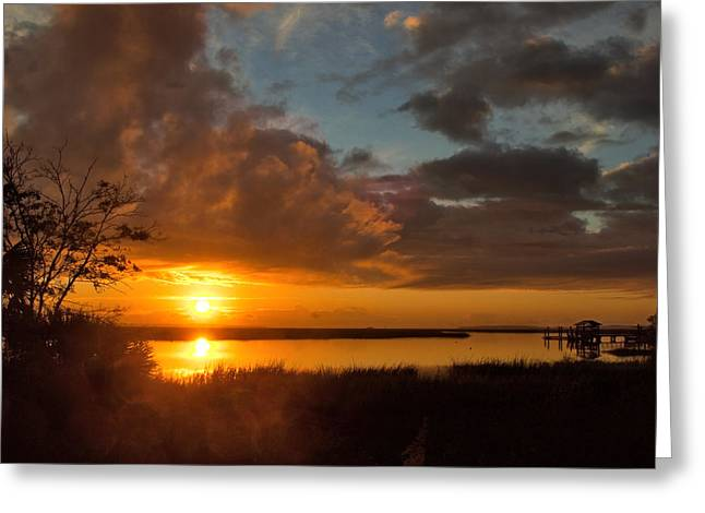 Greeting Card featuring the photograph A New Beginning by Laura Ragland