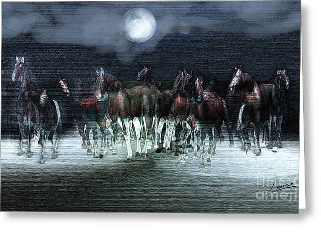 A Night Of Wild Horses Greeting Card