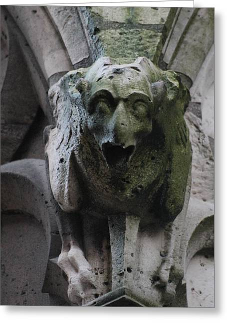 Greeting Card featuring the photograph A Notre Dame Griffon by Christopher Kirby