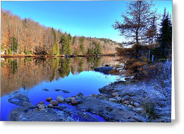Greeting Card featuring the photograph A November Morning On The Pond by David Patterson