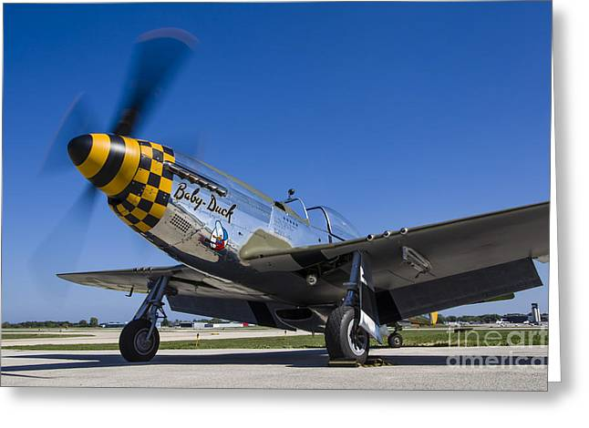 A P-51 Mustang At Waukegan, Illinois Greeting Card by Rob Edgcumbe