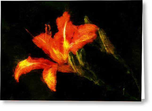 A Painted Lily Greeting Card by Cameron Wood