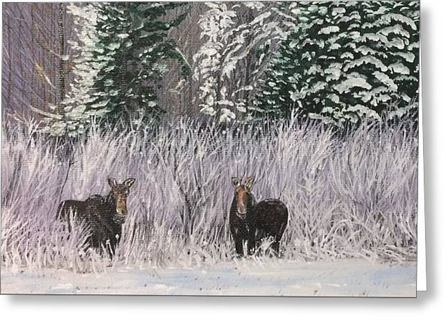 A Pair Of Moose Greeting Card by Lorie Smith