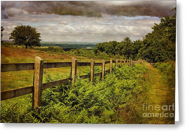 A Path From  A Hill Greeting Card by Linsey Williams