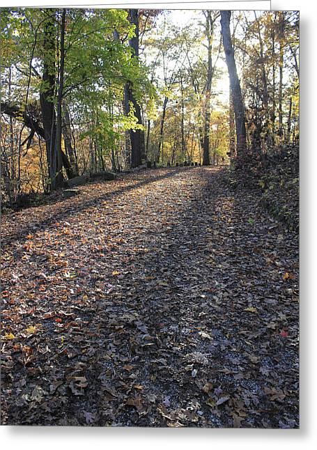 A Path Less Traveled Greeting Card