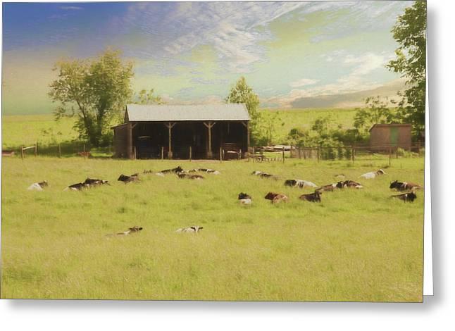 A Peaceful Amish Farm Scene. Greeting Card