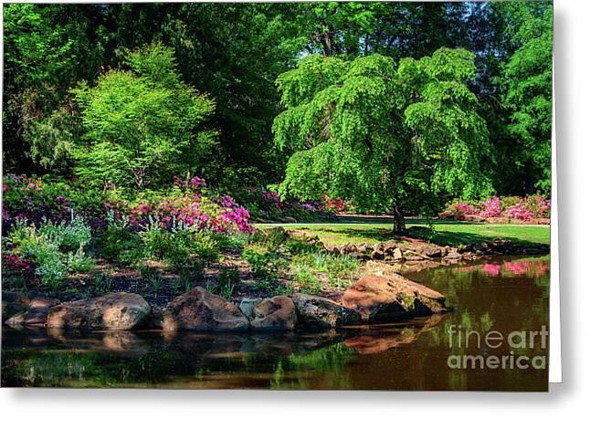 A Peaceful Feeling At The Azalea Pond Greeting Card