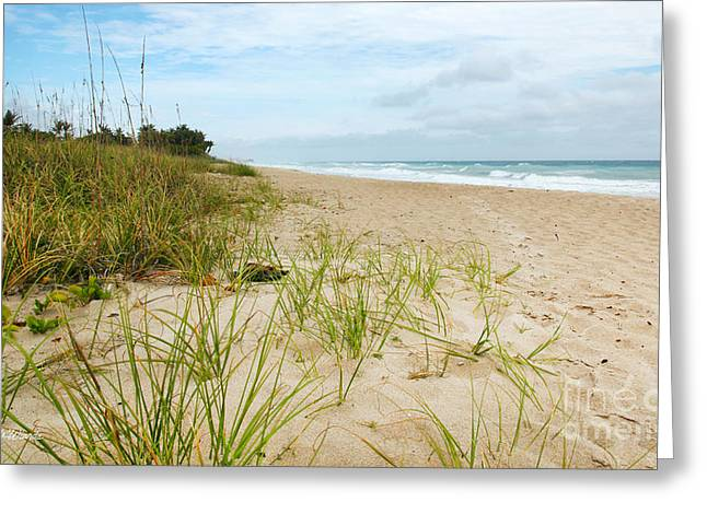 A Peaceful Place By The Sea Greeting Card