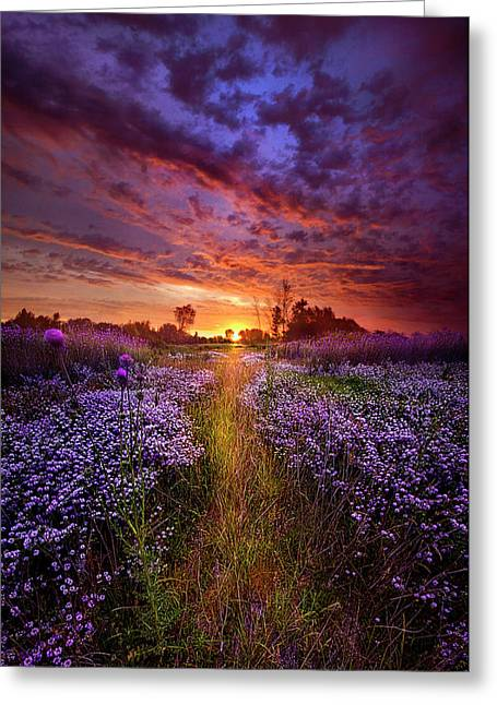 A Peaceful Proposition Greeting Card by Phil Koch