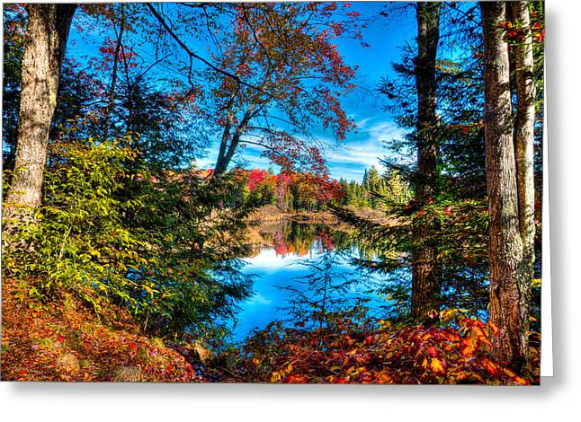 A Peek At The Moose River In Fall Greeting Card