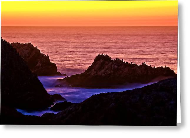A Pelican Sunset, Point Lobos State Preserve, California Greeting Card by Flying Z Photography By Zayne Diamond