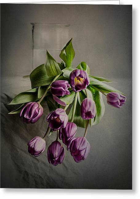 A Penchant For Tulips Greeting Card by Maggie Terlecki