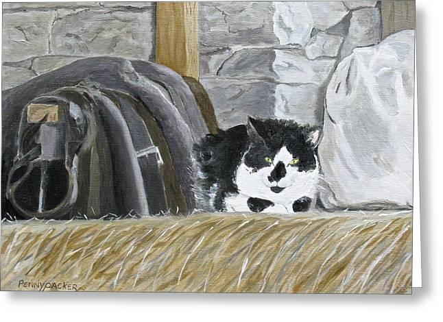 A Penns Valley Barn Kitty Greeting Card