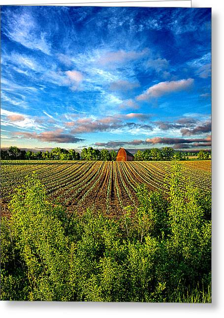 A Perfect Beginning Greeting Card by Phil Koch