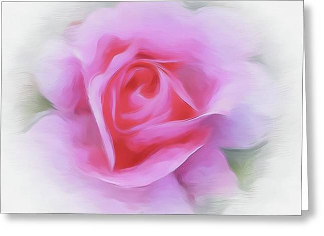 A Perfect Pink Rose Greeting Card