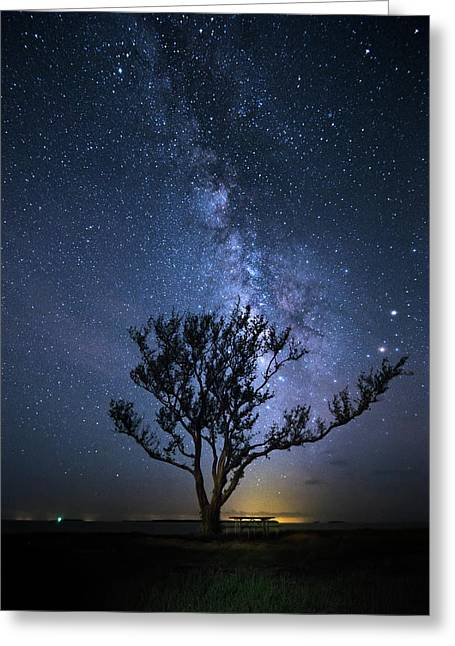 A Picnic Under The Milky Way Greeting Card by Mark Andrew Thomas