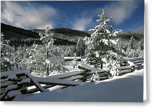 A Place In The Winter Sun Greeting Card