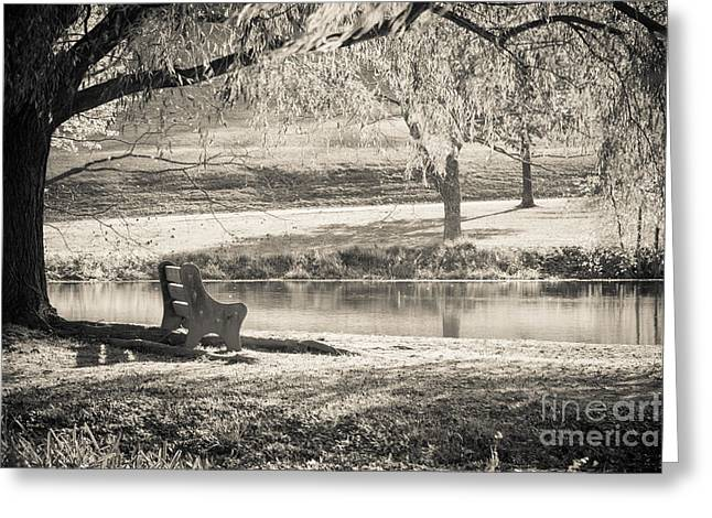 A Place To Rest Greeting Card by Ana V Ramirez