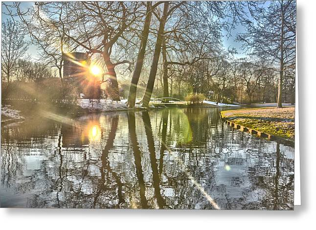 A Pond In Rotterdam Greeting Card