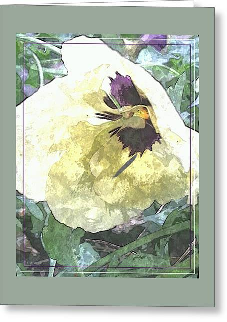 A Pop Of Pansy Greeting Card