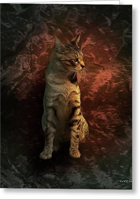 A Portrait Of Coco Greeting Card by Yuri Lev