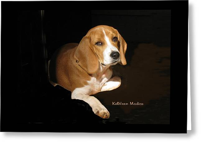 Greeting Card featuring the photograph A Portrait Of Jerry by KLM Kathel