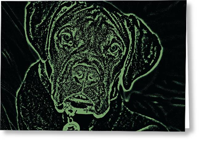 Boxer Digital Greeting Cards - A Positive Negative Greeting Card by DigiArt Diaries by Vicky B Fuller