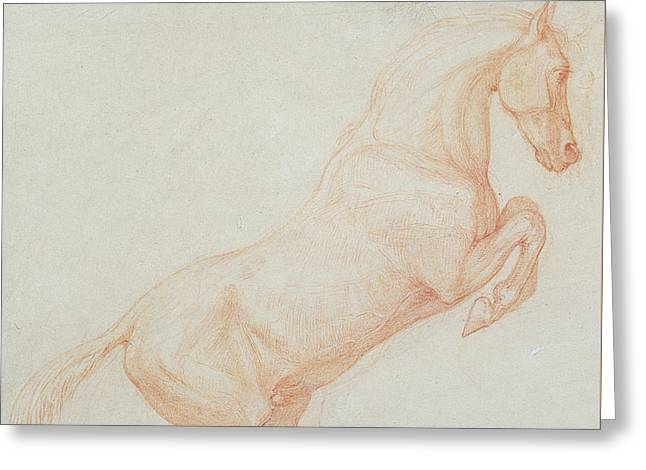 A Prancing Horse Greeting Card by George Stubbs