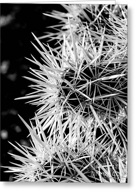 A Prickly Subject Greeting Card