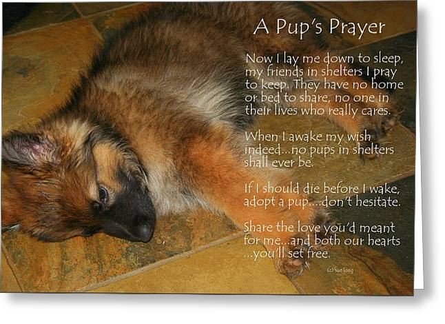 A Pup's Prayer Greeting Card