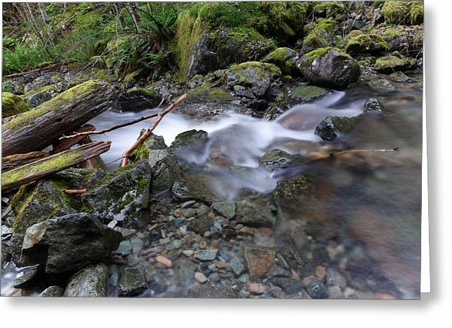 A Quiet Flowing  Greeting Card by Jeff Swan