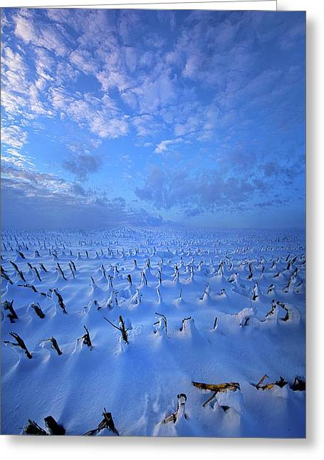 Greeting Card featuring the photograph A Quiet Light Purely Seen by Phil Koch