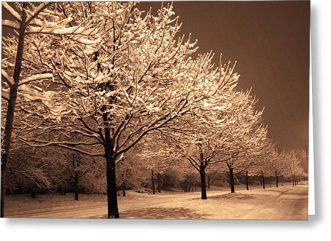 A Quiet Snowy Night Greeting Card by Jackie Reitsma