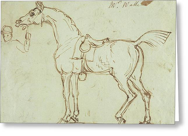 A Racehorse, Bridled And Saddled  Greeting Card by James Seymour