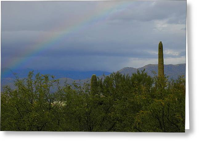 A Rainbow In The Desert Greeting Card