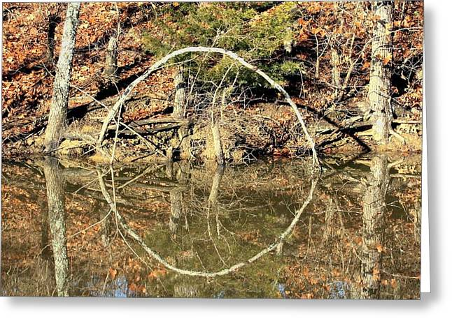 A Ring On The Pond In Fall Greeting Card