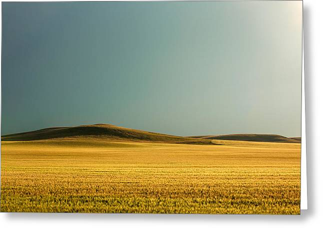 A Rise On The Plains Greeting Card by Todd Klassy