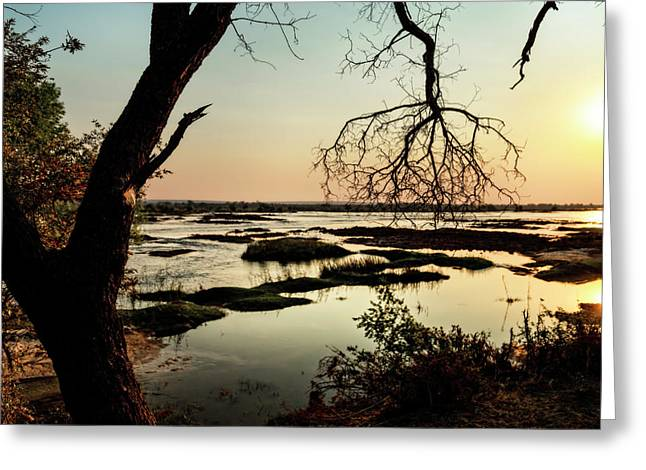 A River Sunset In Botswana Greeting Card