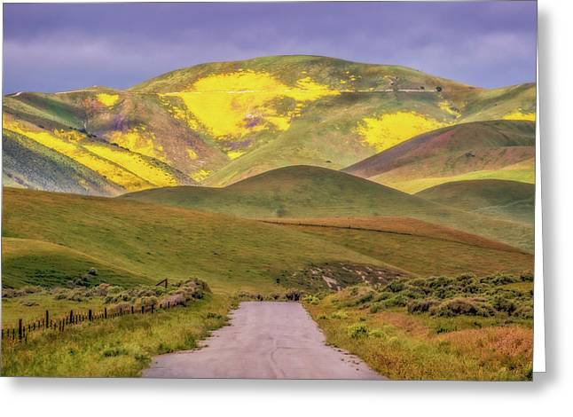Greeting Card featuring the photograph A Road Less Traveled by Marc Crumpler