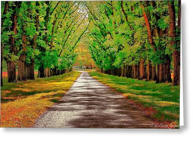A Road Through Autumn Greeting Card