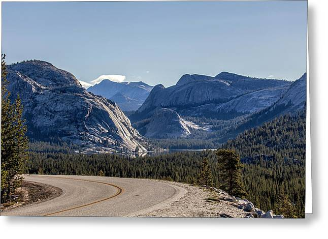 Greeting Card featuring the photograph A Road To Follow by Everet Regal