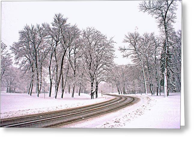 A Road To Winter Greeting Card by Kay Novy